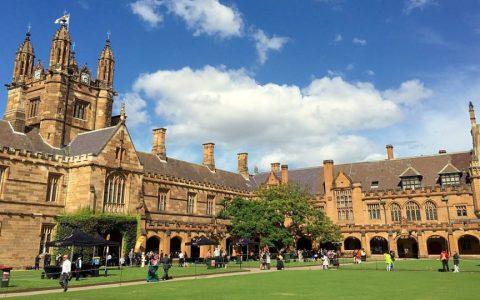 【通知】悉尼大学语言班于本月11月24日截止缴费