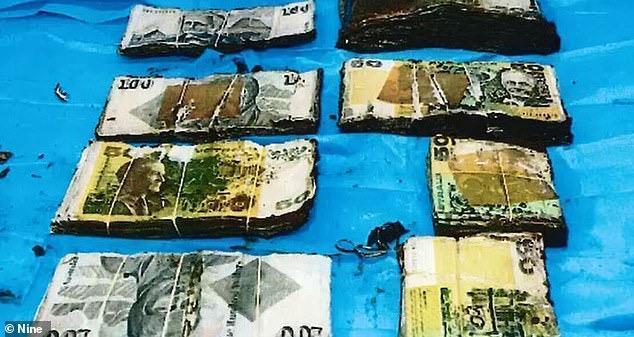 澳洲工地挖到万现金!华人埋的,为分钱多方闹上法庭,钱到底属于谁?