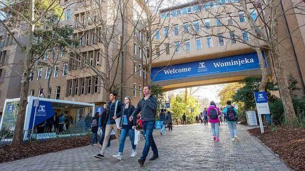 墨尔本大学商学院(MBS)2021研究生、博士、本科、预科录取要求更新