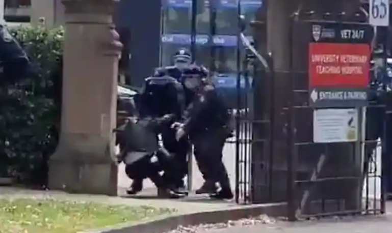 悉尼大学教抗议法的教授在学生抗议活动中被捕