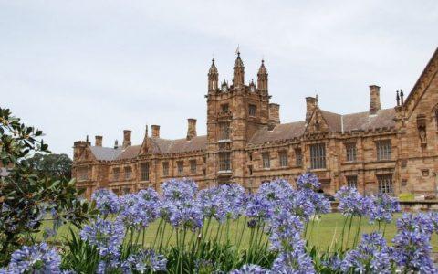 悉尼大学在泰晤士报高等教育学科排名中表现强劲,工程和社会科学上升20多个位次