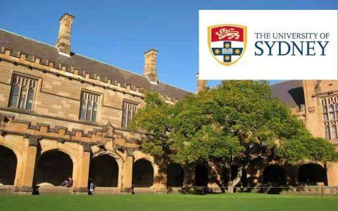 悉尼大学 USYD - Master of Engineering (Risk Management)工程硕士(风险管理)详解