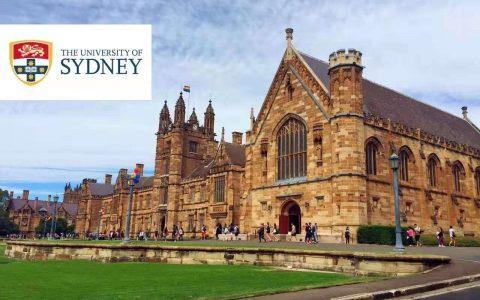 悉尼大学 USYD - Master of Museum and Heritage Studies(博物馆和遗产研究硕士)详解